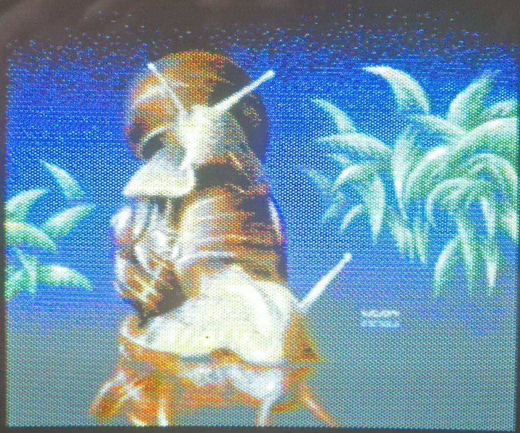 Das MCI-Bild auf meinem SX-64